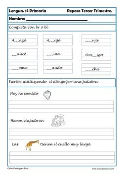 lengua primaria 18
