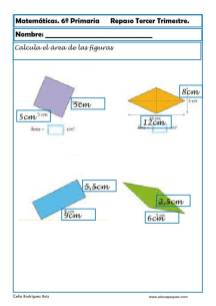 fichas matemáticas sexto primaria 19