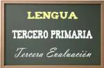 Lengua primaria 3-3