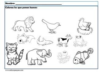 infantil animales_003
