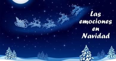 ¿Qué emociones positivas y negativas genera la época de Navidad?