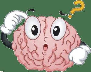 alimentación del cerebro