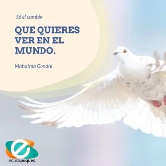 paz 6