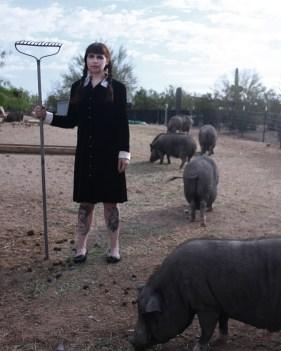 Wednesday Addams Pig Rescue