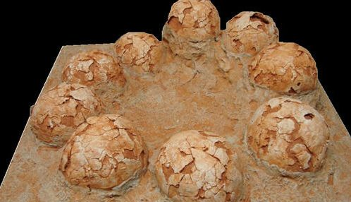 Dinosaur Nests and Tracks - During a World-Wide Flood?