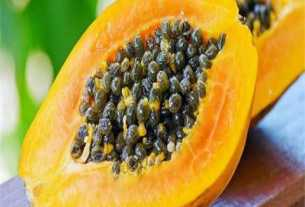Papaya seeds are more expensive than gold