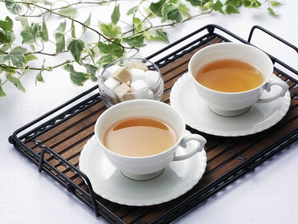 Amazing information about tea