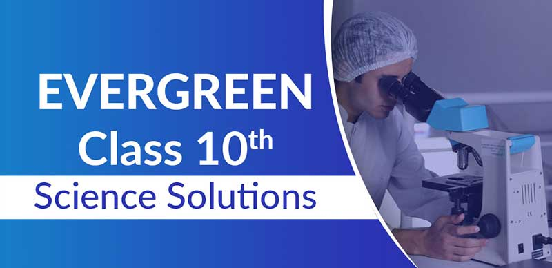 Evergreen Science Solutions Class 10
