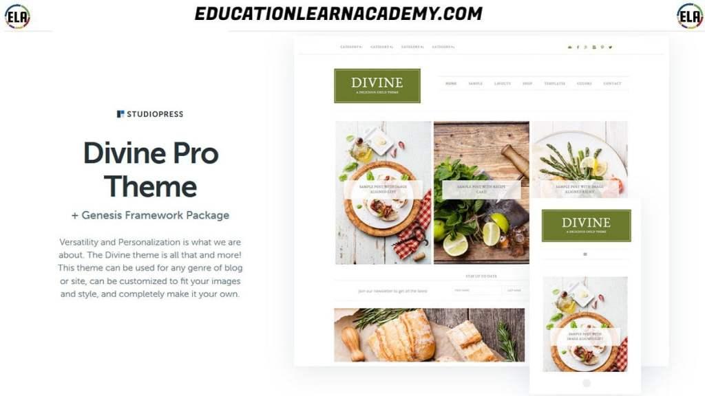 Free Download Divine Pro Theme