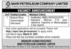 Meri petroleum company limited jobs 2021