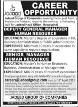 Jadeed group of company Jobs Advertisement 2021