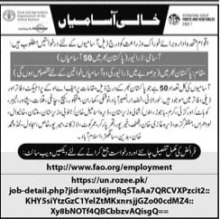 www.fao.org Apply Online Pakistan 2021 Advertisement for Male and Female