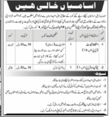 Steno Typist And Watchman Required in Karachi 2021 Latest