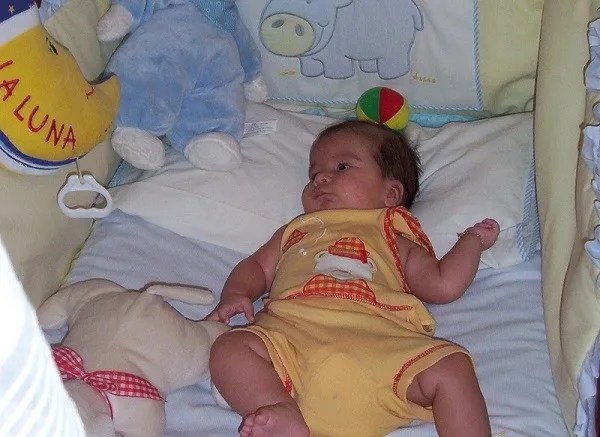 desarrollo del bebe