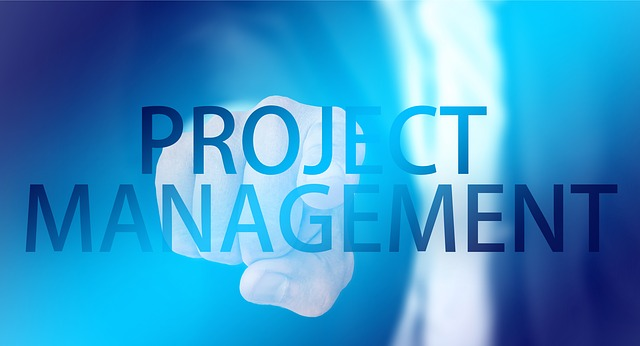 Project Monitoring, Measurement, Analysis and Improvement