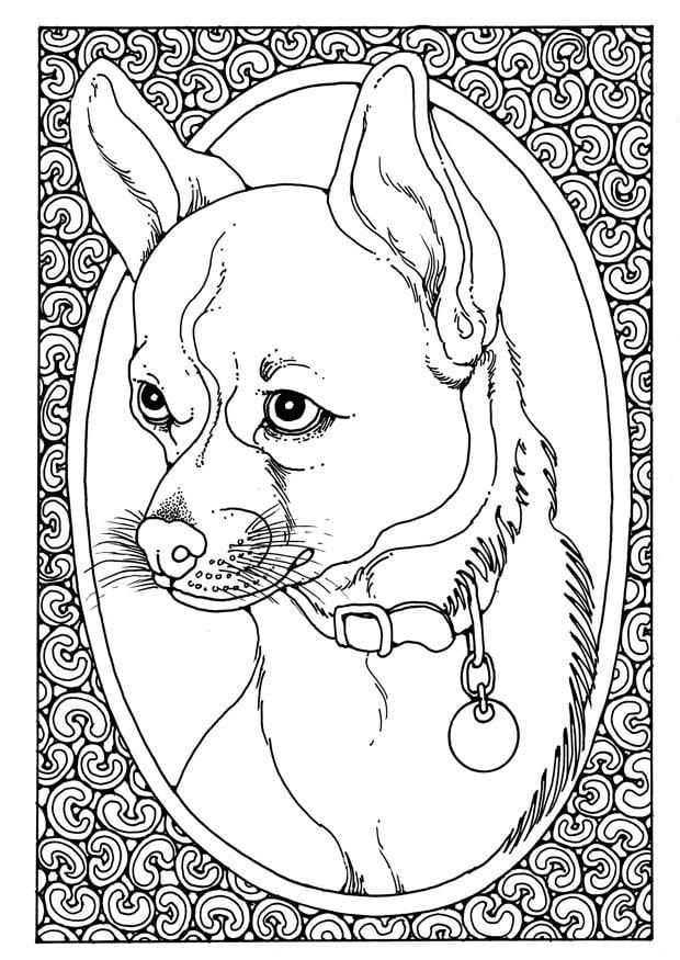 Coloriage Portrait De Chien Img 28205