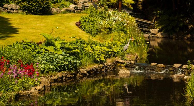 The pond Hyde Park, London, UK