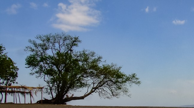 The lone ranger Beaches at Ometepe Isle, Rivas, Nicaragua