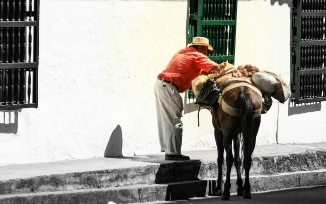 Cargando café Supía, Caldas, Colombia