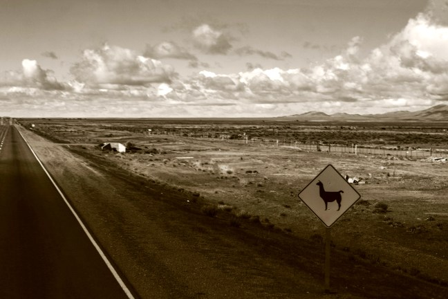 <em><strong>The Puna landscapes</strong>           Highway to La Quiaca, Jujuy, Argentina</em>