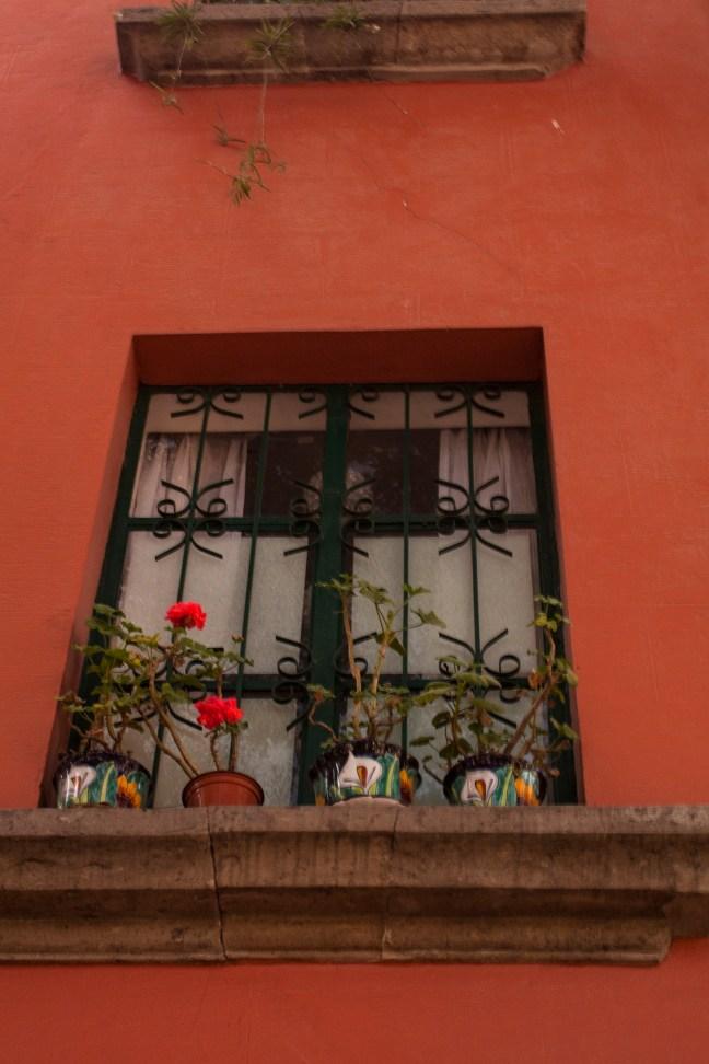 Ventanal Colonia Roma, CDMX, México