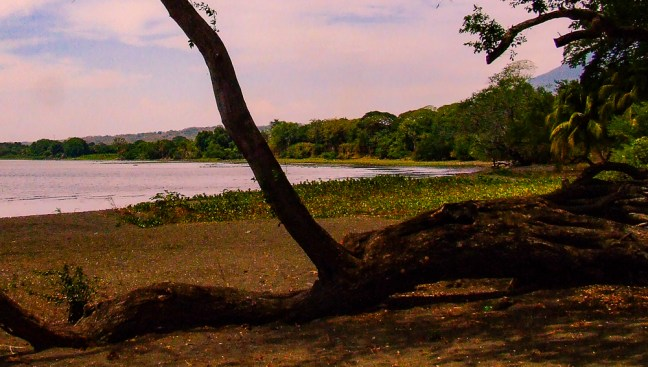 The beach cove Ometepe Isle, Rivas, Nicaragua