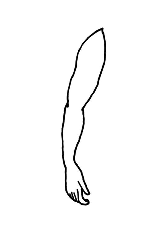coloring page arm img 9520