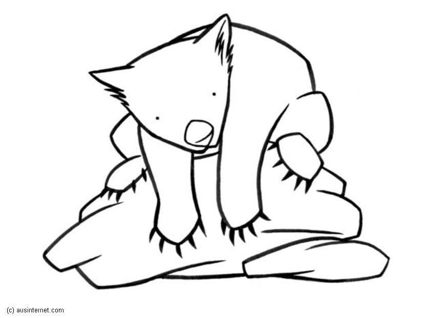 Coloring Page Wombat Img 5609