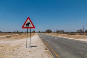 Caprivi Game Reserve / Namibië