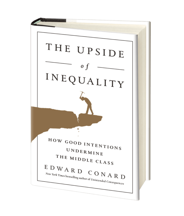 Upside of Inequality_3D cover