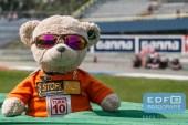 Teddy Racing kijkt toe bij de Max Verstappen Toro Rosso Formule 1 demo tijdens de Gamma Racing Day op TT-Circuit Assen