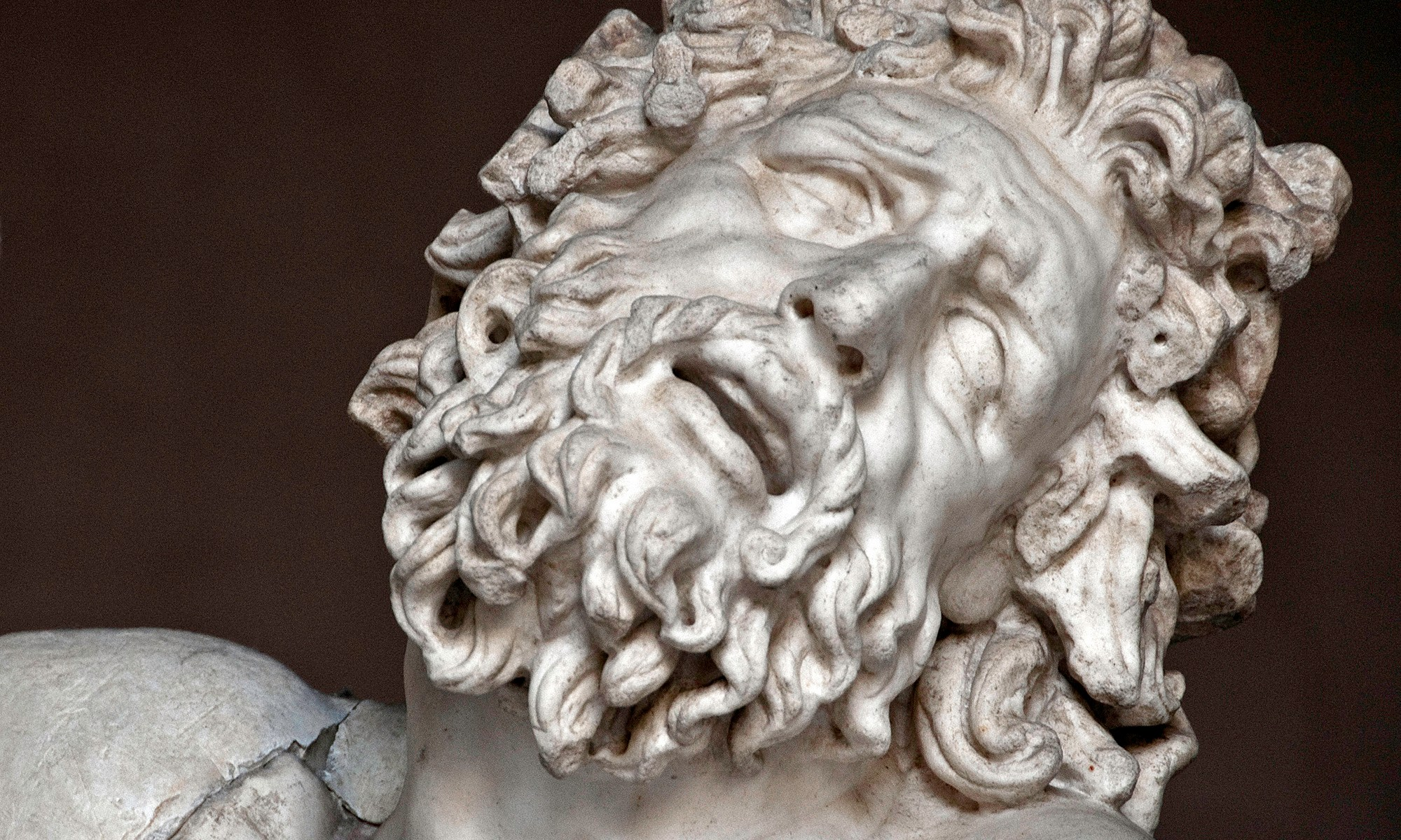 Laocoon Sculpture Detail