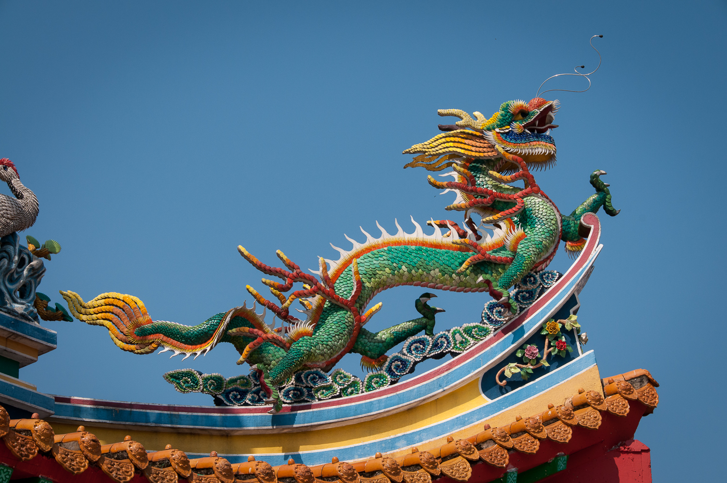 Chinese Dragon on Temple