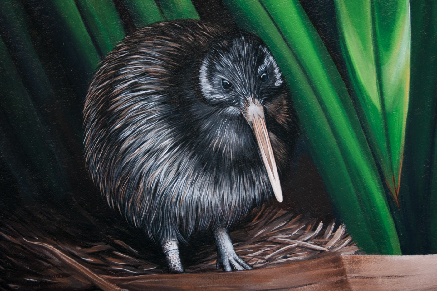 Kiwi Mural