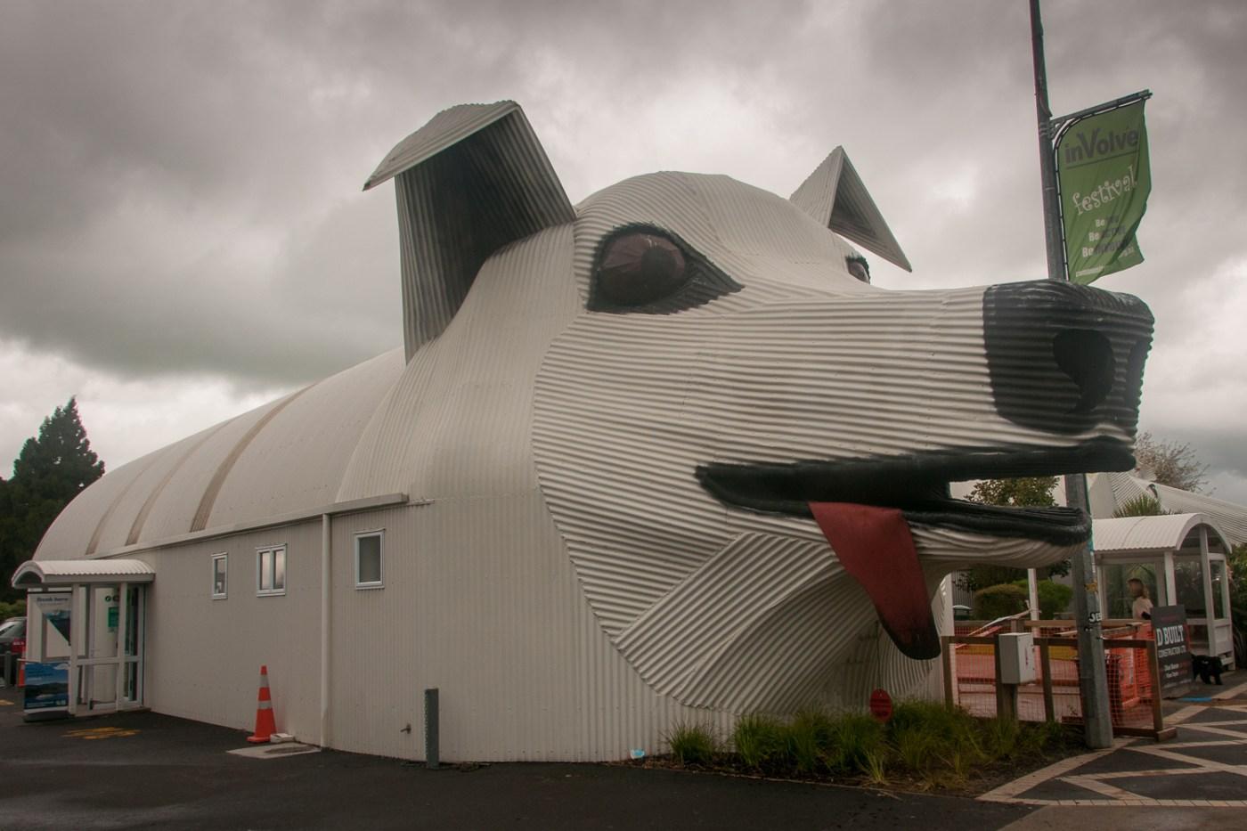 Giant Dog Tirau