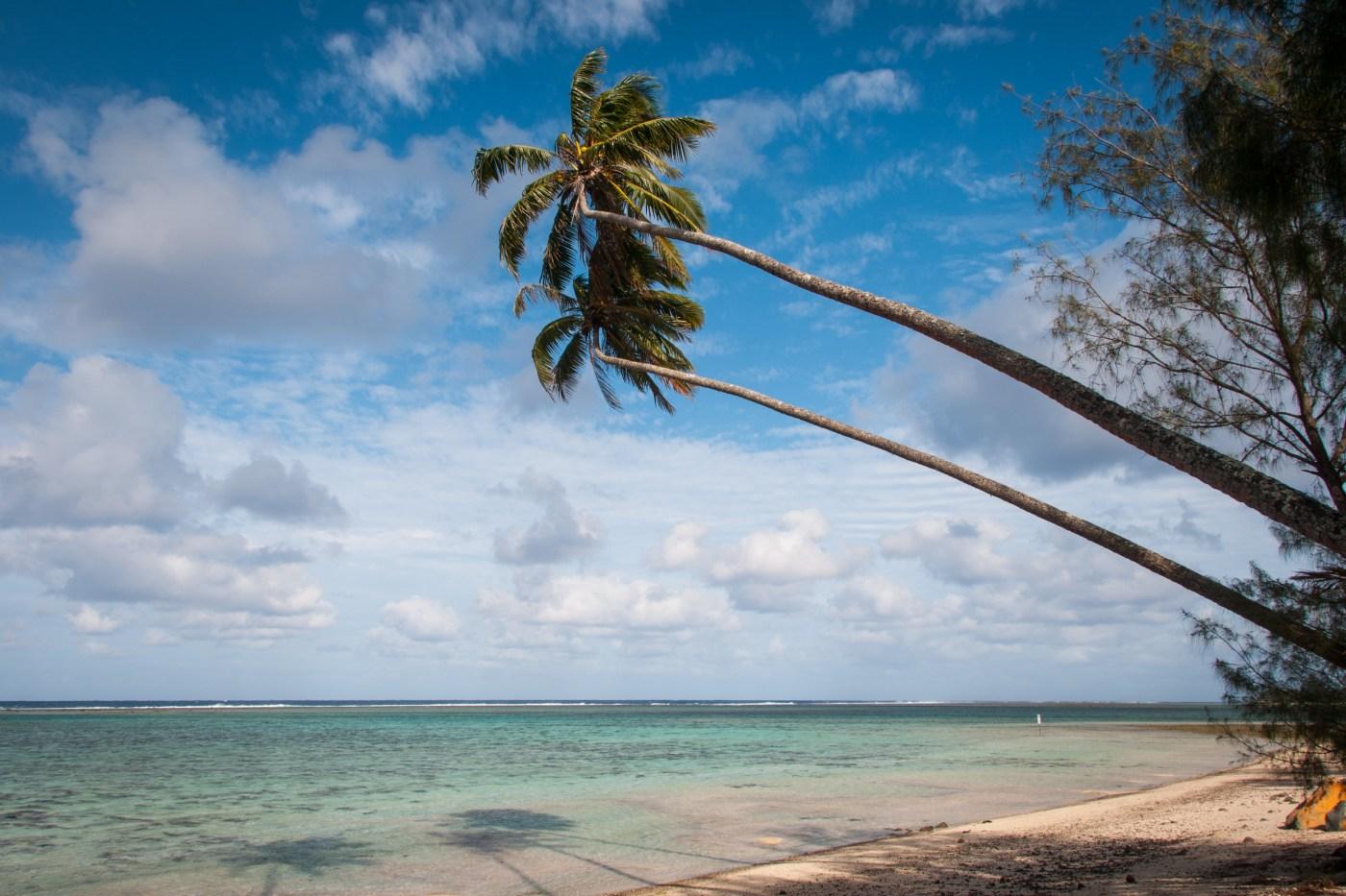 Palms at Vaimaanga Beach