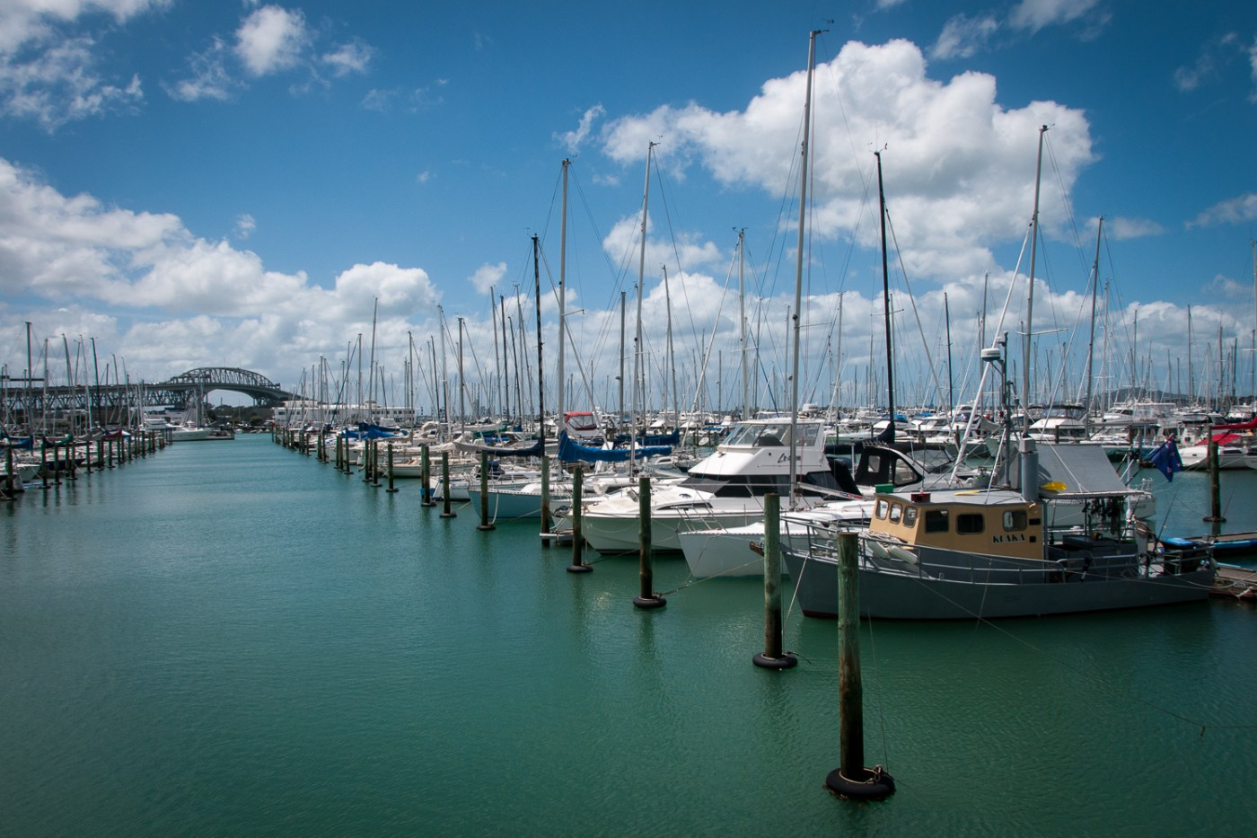 Westhaven Marina Auckland