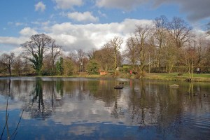 Fishing Pond at Abney Hall Park