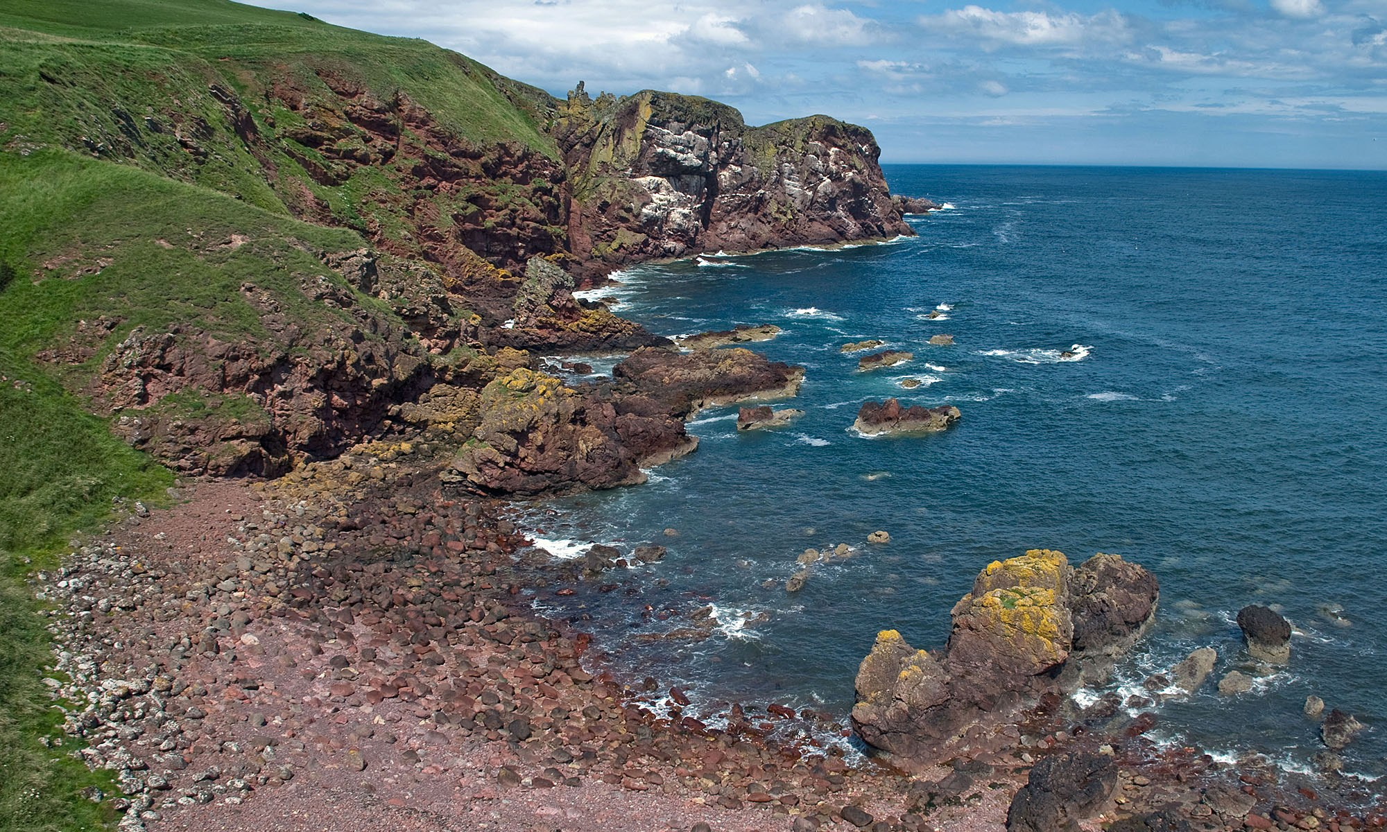 Coastline at St. Abb's Head