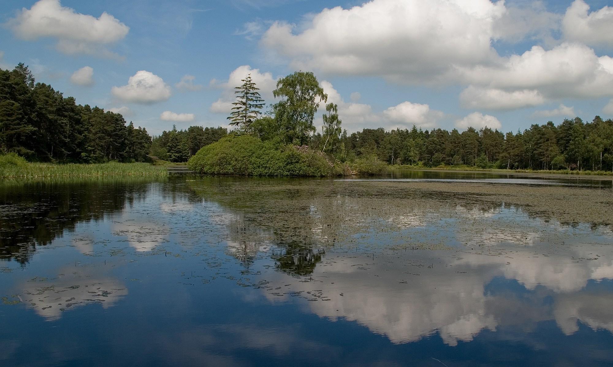 North Nelly Moss Lake, Cragside Estate