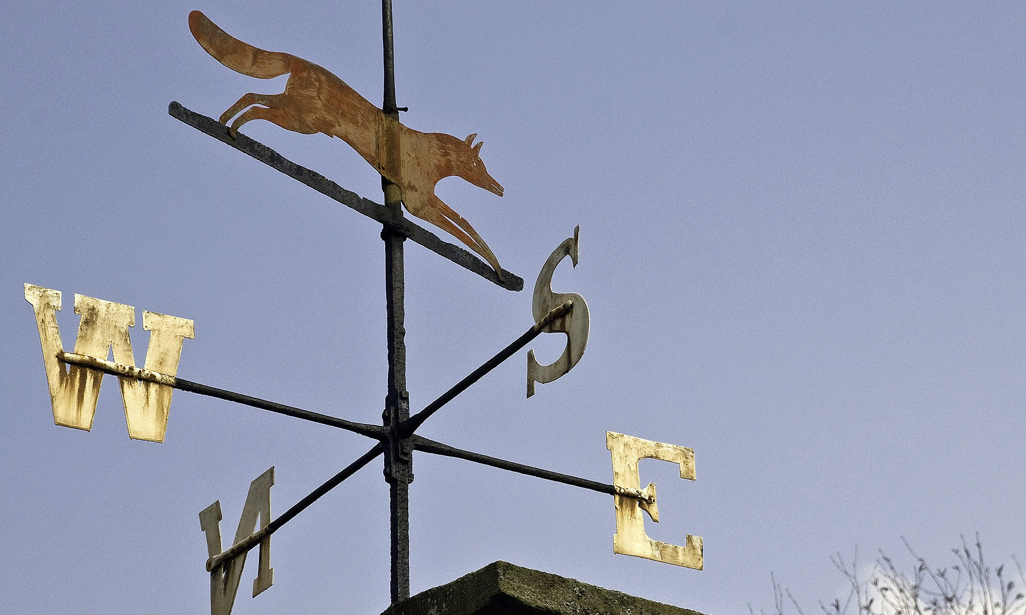 Red Fox on Weather Vane, County Durham