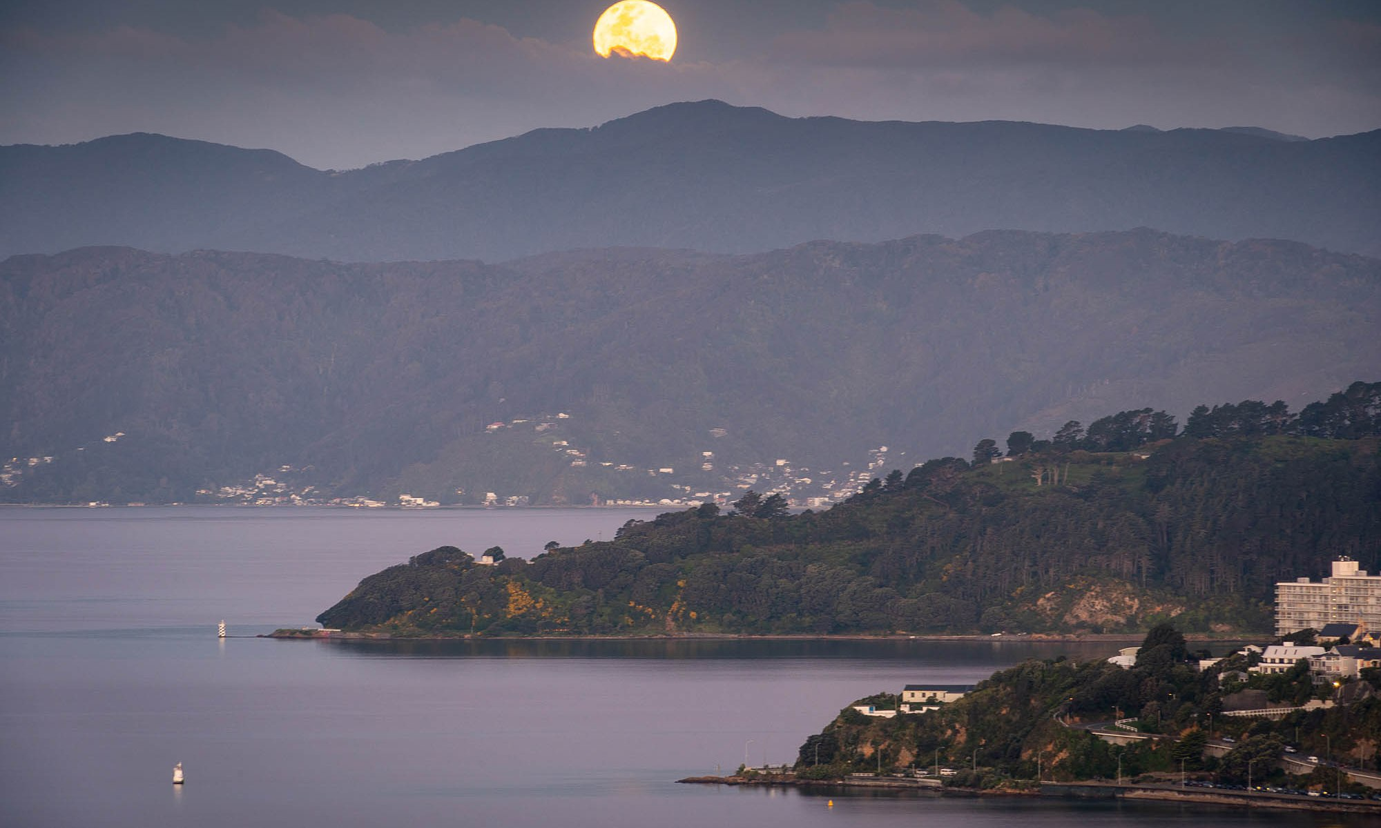 Moonrise over Wellington Harbour