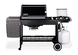 Ed Young S True Value Weber Gas Grill Model Listings