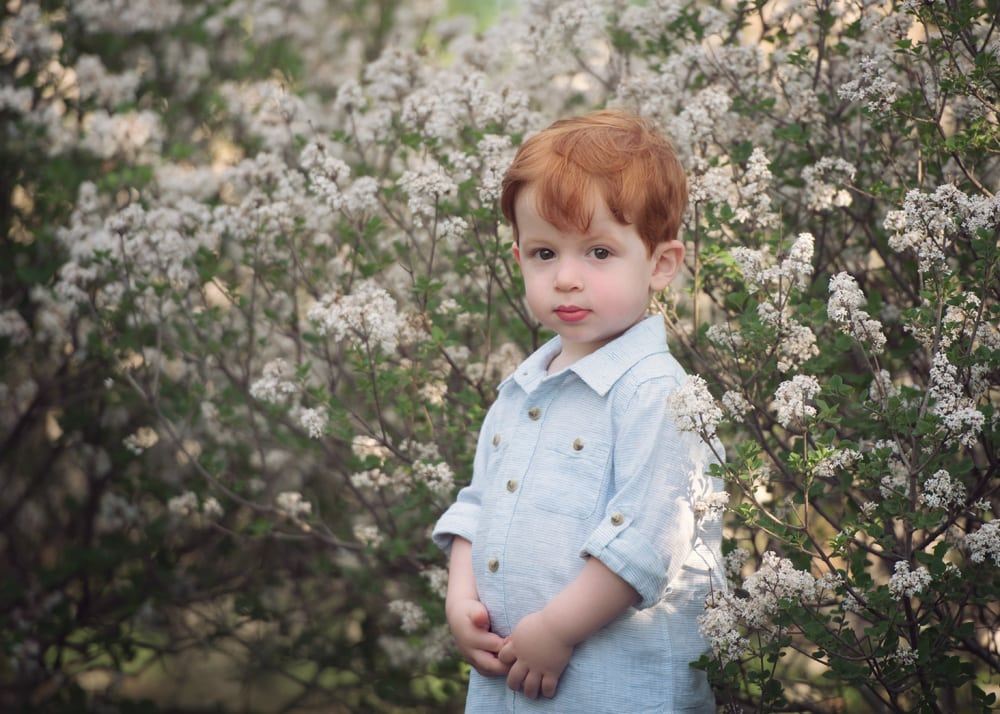 Photo of boy standing with flowers