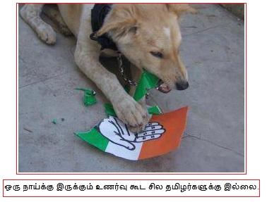 sonia congress india