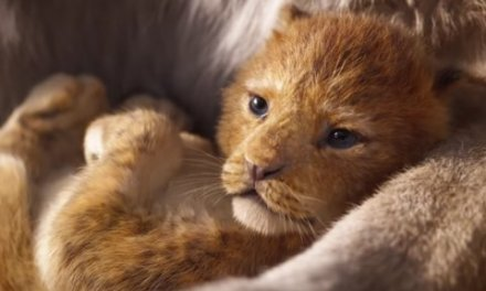 """Watch the Official Trailer for """"Lion King"""" Movie"""