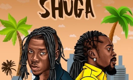 "Watch the New Stonebwoy & Beenie Man Collaboration ""Shuga"""
