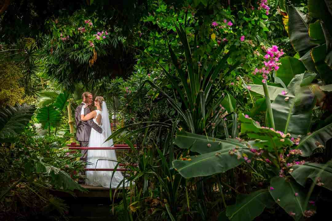 bruidsreportage Rozen & Radijs