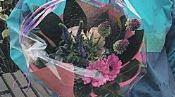 th 195x97 bloemetje maasgouw nieuws