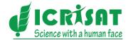 icrisat logo